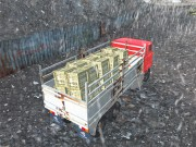 Play Offroad Truck Driver on FOG.COM