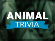 Play Animal Trivia On FOG.COM