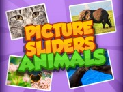 Play Picture Slider Animals on FOG.COM